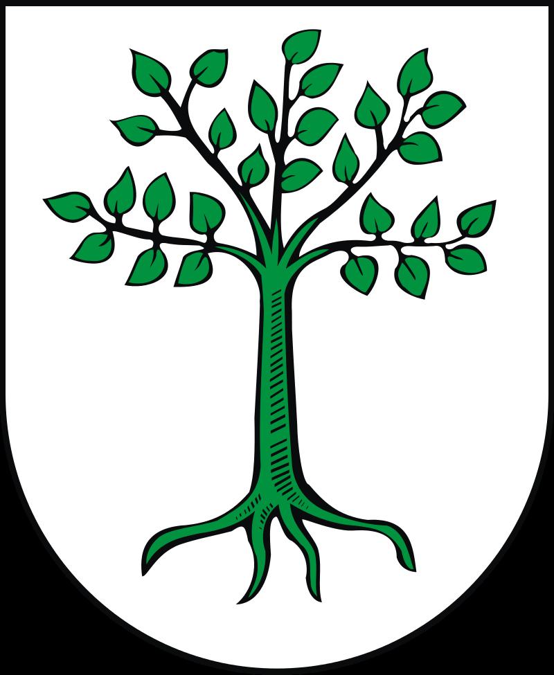 Gmina Kruszwica Herb Wiki